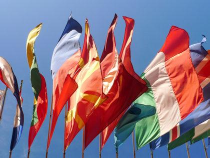 Internazionalizzazione degli studi legali: la traduzione nello spazio Giuridico